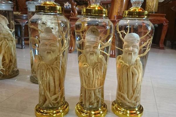 Bình thủy tinh ngâm rượu giá rẻ mua ở đâu tại Bà Rịa - Vũng Tàu