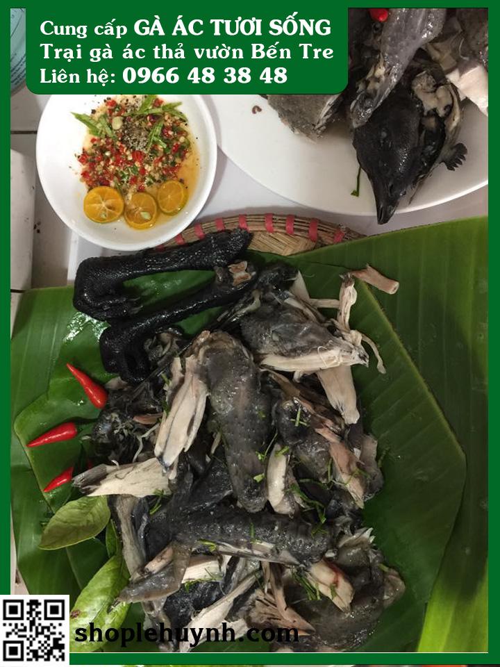 Trại Gà ác tại Long An - Gà ác Lê Huỳnh